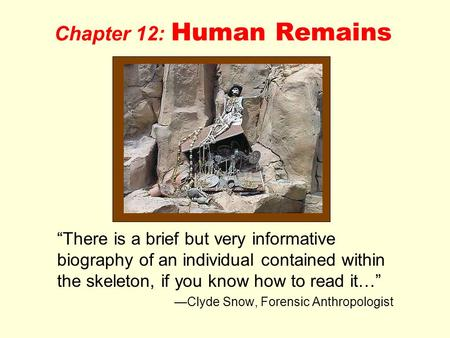 "Chapter 12: Human Remains ""There is a brief but very informative biography of an individual contained within the skeleton, if you know how to read it…"""