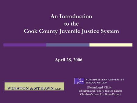 An Introduction to the Cook County Juvenile Justice System April 28, 2006 Bluhm Legal Clinic Children's Law Pro Bono Project Children and Family Justice.