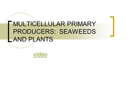 MULTICELLULAR PRIMARY PRODUCERS: SEAWEEDS AND PLANTS video.