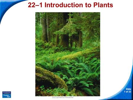 22–1 Introduction to Plants