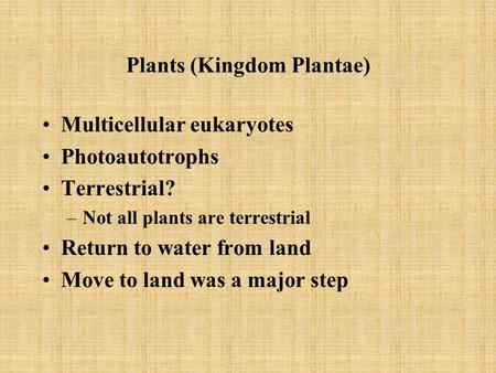 Plants (Kingdom Plantae) Multicellular eukaryotes Photoautotrophs Terrestrial? –Not all plants are terrestrial Return to water from land Move to land was.
