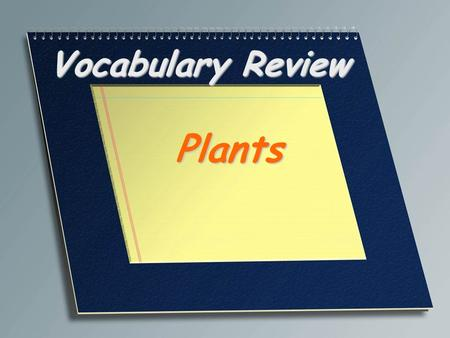 Vocabulary Review Plants. Plant cell with thin walls responsible for metabolic reactions including photosynthesis Parenchyma.