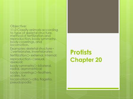 Protists Chapter 20 Objective: