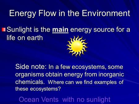 Energy Flow in the Environment
