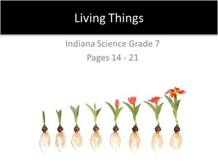 Indiana Science Grade 7 Pages