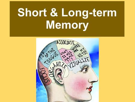 Short & Long-term Memory. Making Memory - Review Three things have to happen: 1.Get information into our brain through encoding. 2.Retain that information.