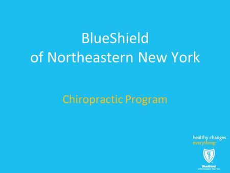BlueShield of Northeastern New York Chiropractic Program.
