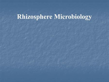 Rhizosphere Microbiology. What is Rhizosphere? The region of the soil in contact with the roots of a plant. It contains many microorganisms and its composition.