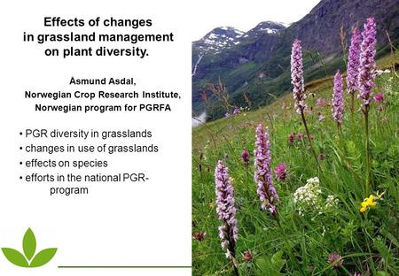 Effects of changes in grassland management on plant diversity. Åsmund Asdal, Norwegian Crop Research Institute, Norwegian program for PGRFA PGR diversity.