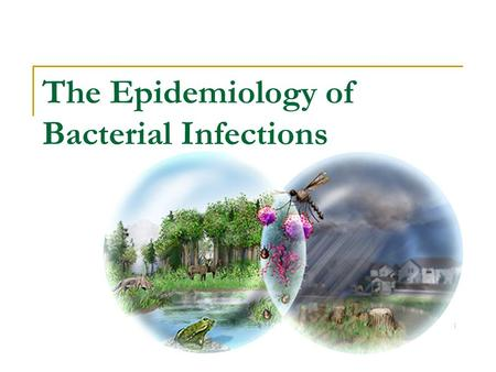 The Epidemiology of Bacterial Infections. 2 Epidemiology 'The study of factors affecting the health and illness of populations' The study of: - the occurrence.
