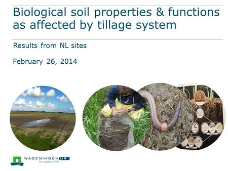 Biological soil properties & functions as affected by tillage system Results from NL sites February 26, 2014.