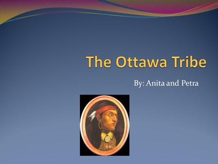 By: Anita and Petra Food The Ottawa tribe ate moose, rabbit, beaver and wolverine. They used spears and bows for hunting. Sometimes, they would dress.