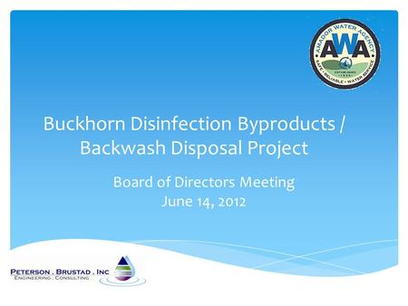 Buckhorn Disinfection Byproducts / Backwash Disposal Project Board of Directors Meeting June 14, 2012.