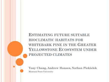 E STIMATING FUTURE SUITABLE BIOCLIMATIC HABITATS FOR WHITEBARK PINE IN THE G REATER Y ELLOWSTONE E COSYSTEM UNDER PROJECTED CLIMATES Tony Chang, Andrew.
