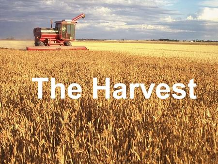 Photo Album by Gene Smith The Harvest. Matthew 9:35-38 Jesus went through all the towns and villages, teaching in their synagogues, preaching the good.