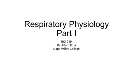Respiratory Physiology Part I BIO 219 Dr. Adam Ross Napa Valley College.