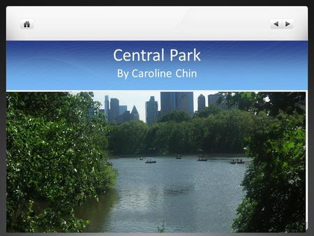 Central Park By Caroline Chin. Central Park covers more than 800 acres and is located in the middle of Manhattan.