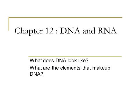 Chapter 12 : DNA and RNA What does DNA look like? What are the elements that makeup DNA?