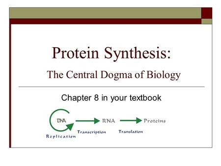Protein Synthesis: The Central Dogma of Biology Chapter 8 in your textbook.