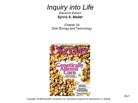 24-1 Inquiry into Life Eleventh Edition Sylvia S. Mader Chapter 24 DNA Biology and Technology Copyright The McGraw-Hill Companies, Inc. Permission required.