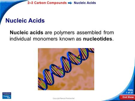End Show 2–3 Carbon Compounds Slide 1 of 37 Copyright Pearson Prentice Hall Nucleic Acids Nucleic acids are polymers assembled from individual monomers.