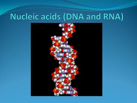 Introduction Nucleic acids are macromolecules made up of smaller nucleotide subunits. They carry genetic information, form specific structures in a cell.
