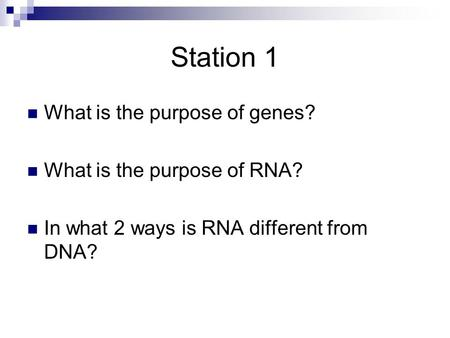 Station 1 What is the purpose of genes? What is the purpose of RNA? In what 2 ways is RNA different from DNA?