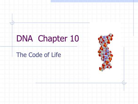 DNA Chapter 10 The Code of Life. History Griffith Hershey and Chase Chargaff Linus Pauling Maurice Wilkins Rosalind Franklin Francis Crick James Watson.