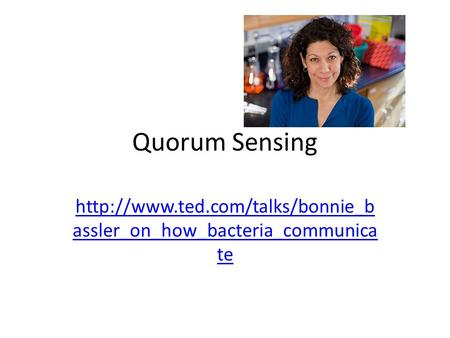 Quorum Sensing http://www.ted.com/talks/bonnie_bassler_on_how_bacteria_communicate This whole field has been created by Dr. Bonnie Bassler. She happened.