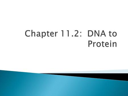  Made up of amino acids  DNA codes for RNA which makes proteins.