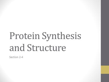Protein Synthesis and Structure Section 2-4. Protein Functions: General Information Proteins account for almost 50% of the dry mass of most cells Proteins.