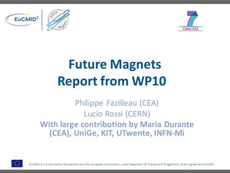 Future Magnets Report from WP10