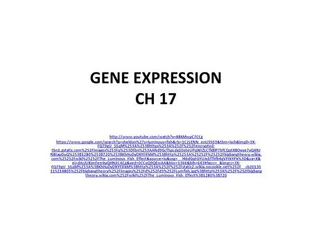 GENE EXPRESSION CH 17  https://www.google.com/search?q=sheldon%27s+luminous+fish&rlz=1C2LENN_enUS503&tbm=isch&imgil=3X-
