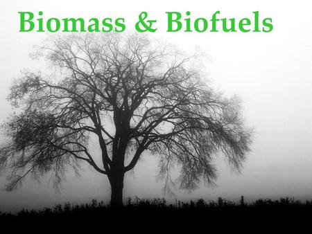 Biomass & Biofuels. Technology Biomass technology today serves many markets that were developed with fossil fuels and modestly reduces their use Uses.