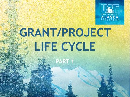 GRANT/PROJECT LIFE CYCLE PART 1. GRANT/PROJECT LIFE CYCLE OVERVIEW.