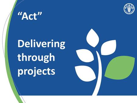 """Act"" Delivering through projects. Effective Country Programme = Effective Projects What is important for effective delivery of FAO's projects?"