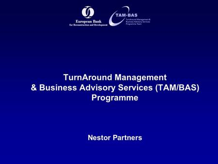 TurnAround Management & Business Advisory Services (TAM/BAS) Programme Nestor Partners.