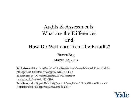 Audits & Assessments: What are the Differences and How Do We Learn from the Results? Brown Bag March 12, 2009 Sal Rubano – Director, Office of the Vice.
