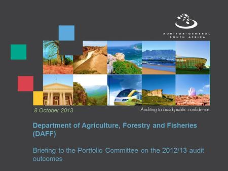 Department of Agriculture, Forestry and Fisheries (DAFF) Briefing to the Portfolio Committee on the 2012/13 audit outcomes 8 October 2013.