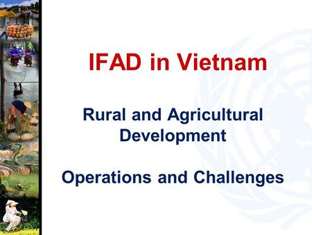 IFAD in Vietnam Rural and Agricultural Development Operations and Challenges.