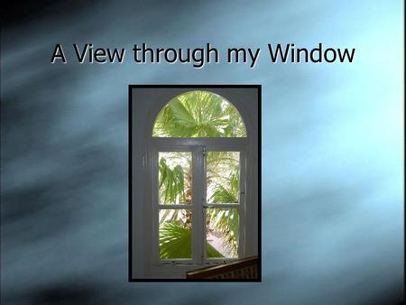 A View through my Window. The window has inspired artists, photographers, architects, and writers throughout the ages.