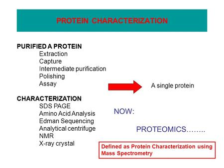 PROTEIN CHARACTERIZATION PURIFIED A PROTEIN Extraction Capture Intermediate purification Polishing AssayCHARACTERIZATION SDS PAGE Amino Acid Analysis Edman.