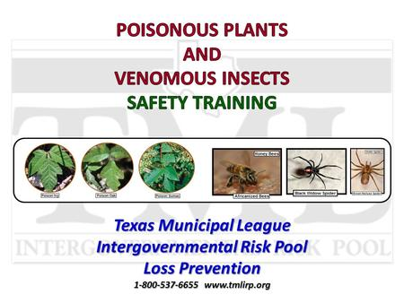 Texas Municipal League Intergovernmental Risk Pool Loss Prevention 1-800-537-6655 www.tmlirp.org.