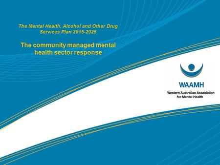 The Mental Health, Alcohol and Other Drug Services Plan 2015-2025 The community managed mental health sector response.