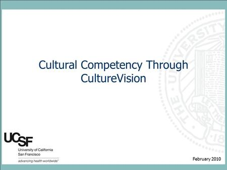 Cultural Competency Through CultureVision February 2010.