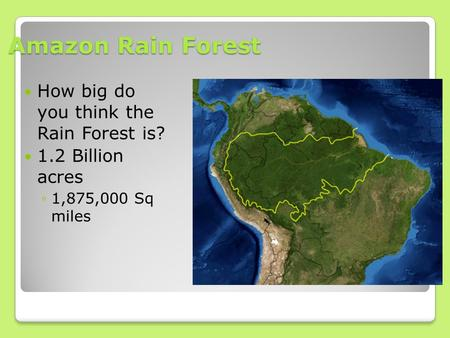 Amazon Rain Forest How big do you think the Rain Forest is? 1.2 Billion acres ◦1,875,000 Sq miles.