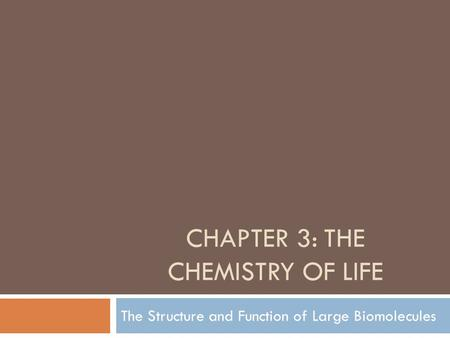 CHAPTER 3: THE CHEMISTRY OF LIFE The Structure and Function of Large Biomolecules.