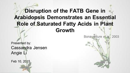 Disruption of the FATB Gene in Arabidopsis Demonstrates an Essential Role of Saturated Fatty Acids in Plant Growth Bonaventure et al., 2003 Presented by:
