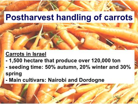 Postharvest handling of carrots Carrots in Israel - 1,500 hectare that produce over 120,000 ton - seeding time: 50% autumn, 20% winter and 30% spring -