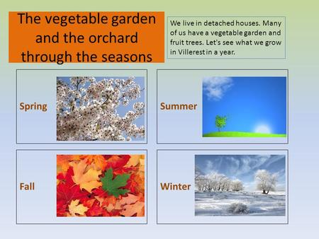 WinterFall Summer The vegetable garden and the orchard through the seasons Spring We live in detached houses. Many of us have a vegetable garden and fruit.